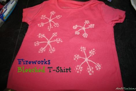 FireworksT-shirt
