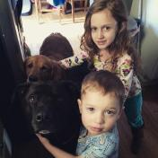 Kidsanddogs